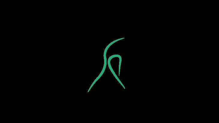 Palestra Kinesis di Mariagrazia Turco - Applicazione